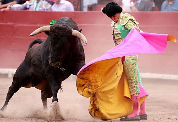Bullfights in a mexican arena